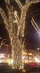 image/2009-12-01T17:25:101