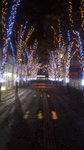 image/2009-12-02T01:04:311