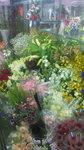 image/2010-02-27T19:29:311